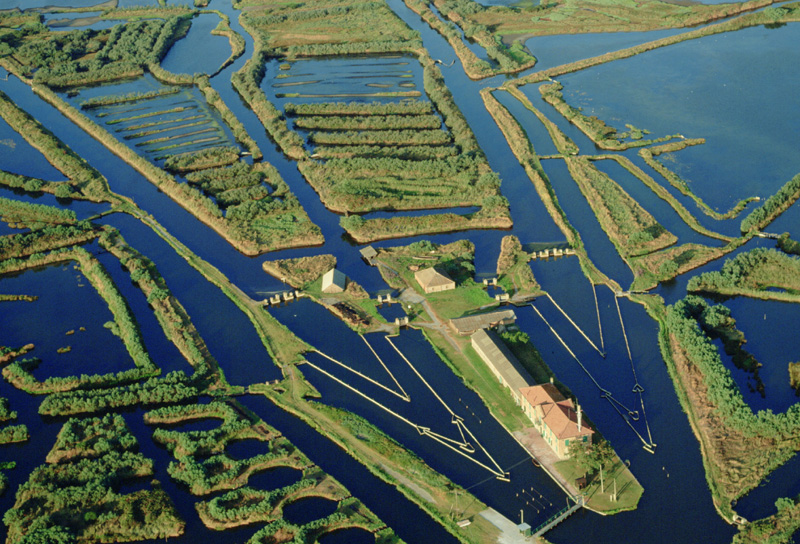 Rimini e l'Emilia Romagna - tra storia e natura